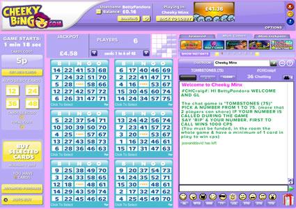 Cheeky Bingo 75 Ball Game