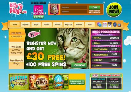 Kitty Bingo Home