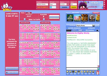 Loony Bingo 90 Ball Game