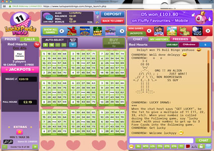 Lucky Pants Bingo 75 Ball Game