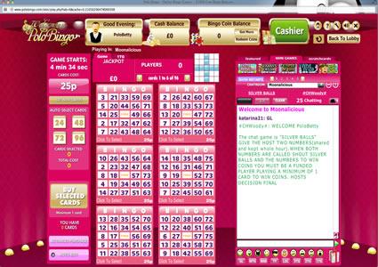 Polo Bingo 75 Ball Game