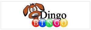 Dingo Bingo - Facebook