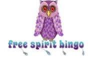 WSN Welcomes 6th Brand, Free Spirit Bingo
